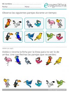 estimulación cognitiva de la memoria para niños