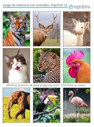 cartas de memoria de animales